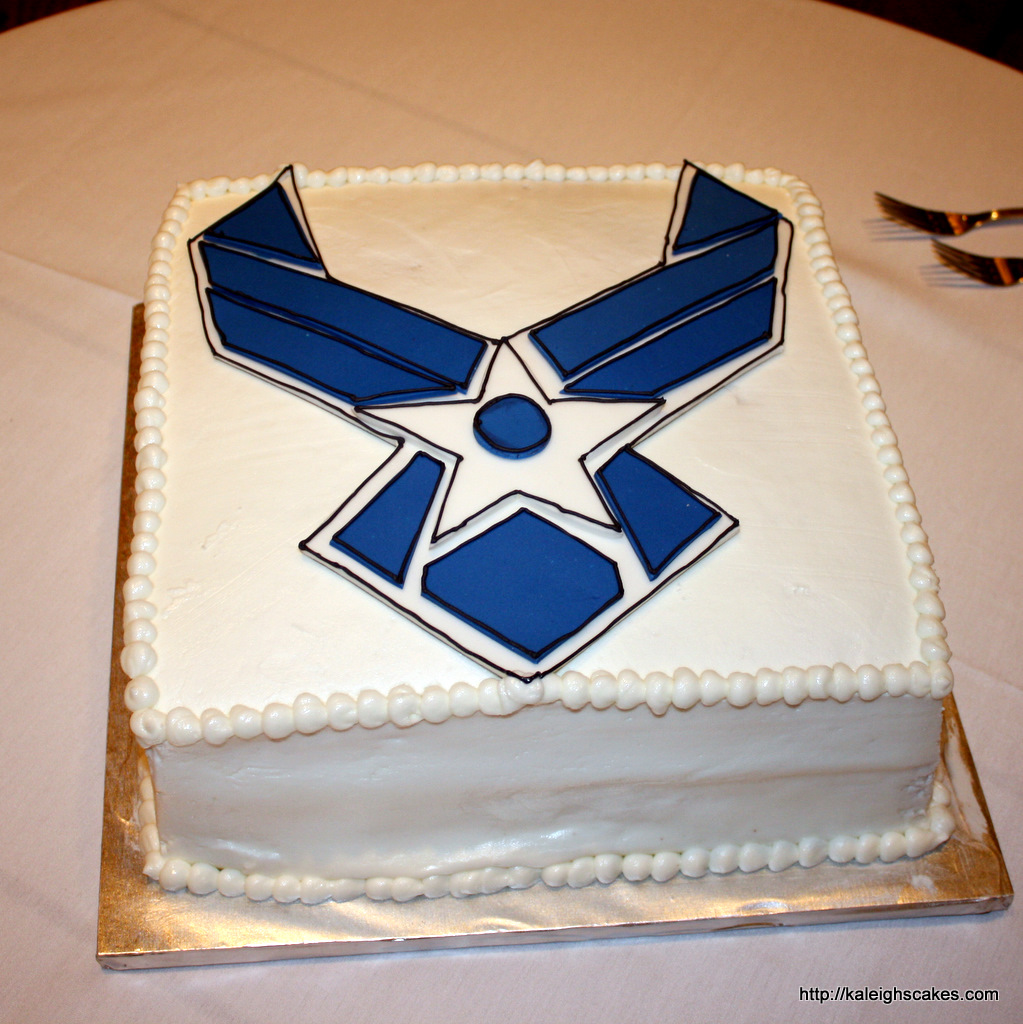 kaleigh 39 s cakes air force groom s cake